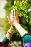 Spring prayer – adoring the healing powers of the spring. Tree in hands. Stock Photos