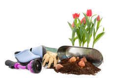 Spring Prep Royalty Free Stock Photography