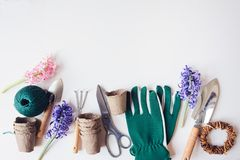 Spring preparations for planting flowers top view Stock Image
