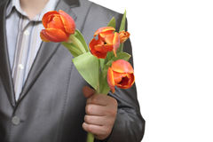 Spring present. Male hand holds orange tulips as a present Royalty Free Stock Photos