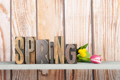 Spring in print letters Stock Photo