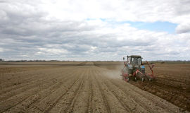 Spring processing potato crops. Treatment fields from weeds after a spring planting of potatoes Stock Photos