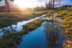 Spring puddle with reflections. Sunset countryside scene. Spring grass and sun shine stock photo