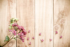 Spring Purple flowers on old wooden background Royalty Free Stock Photography