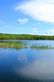 Spring quiet pond and cloud Stock Image