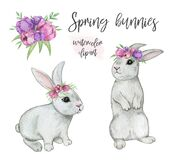 Spring rabbit clipart, watercolor bunnies isolated, easter bunny set, rabbit hand drawn illustration, cute woodland animals