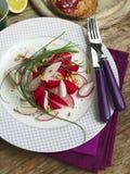 Spring Radishes Salad Royalty Free Stock Photos
