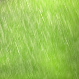 Spring rain background Stock Photography