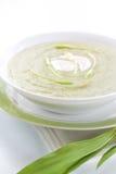 Spring ramson soup Royalty Free Stock Photos