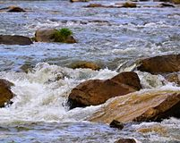 Spring rapids river Stock Photo