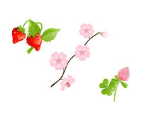 Spring realistic clip art Stock Images