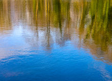 Free Spring Reflections Stock Photos - 38368873