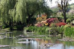 Spring reflections. Pond in blossomed garden stock images