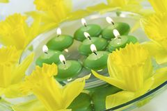 Spring relaxation. Daffodils and floatind candles Stock Images