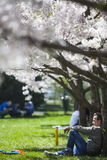 Spring relaxation Stock Image
