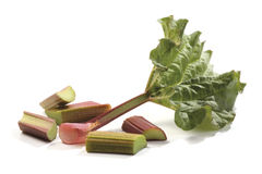 Spring rhubarb Royalty Free Stock Photos