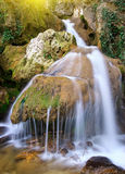 Spring rill flow. Nature composition Stock Photos