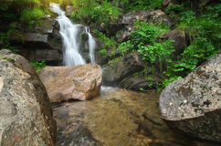 Spring rill flow. Royalty Free Stock Images