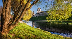 Spring riot of gree. Nery next to the Pskov Kremlin Royalty Free Stock Photography