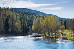 Spring river, Royalty Free Stock Image