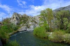 Spring river bend Stock Photos