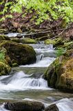 The spring river in the Carpathians. Mountain river in spring Carpathians stock photography