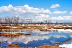 Spring. River and clouds Stock Photos