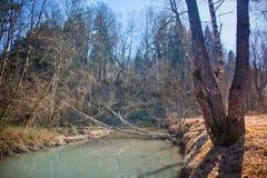 Spring River Stock Photos