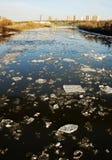 Spring river in edmonton Royalty Free Stock Image