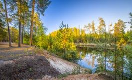 Spring river forest landscape Stock Photos