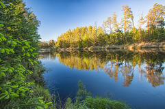 Spring river forest landscape Royalty Free Stock Photo