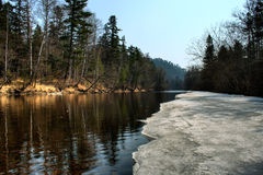 Spring river with ice Royalty Free Stock Images