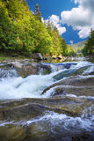 Spring river landscape. Fast stream in a mountain forest on a spring time Royalty Free Stock Photography