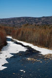 Spring on the river. Taiga river in the early spring allocated on a blue background of the sky Royalty Free Stock Image