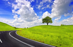 Spring road Stock Image