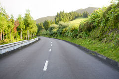 Spring road - Azores Stock Image