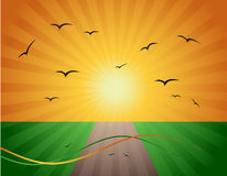 Spring, road on green field. Vector illustration Stock Photos
