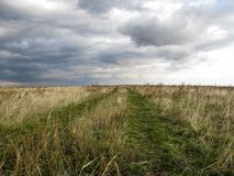 Spring road on green fresh grass on a cloudy day royalty free stock images