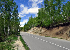 Spring road landscape royalty free stock photos