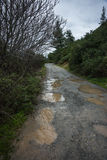 Spring roads after heavy rain at Evbia, Greece Stock Photos
