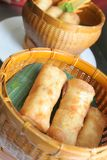 Spring roll. S are fried pastries asia food Royalty Free Stock Images