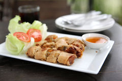 Spring Roll also known as Egg Roll Stock Image