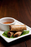 Spring roll appetizer Stock Images