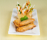 Spring Roll on background Stock Images