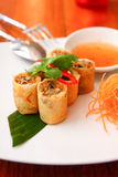 Spring roll. Delicious appetizer spring roll Royalty Free Stock Images