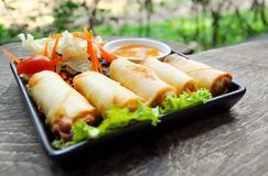 Spring roll. Dish on the table Stock Images