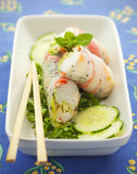 Spring roll food Royalty Free Stock Photos