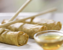 Spring roll horizontal Royalty Free Stock Photos