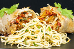Spring Roll and Noodles Stock Images