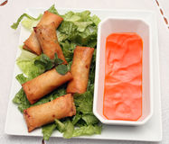 Spring roll plate Stock Photos